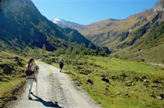 Independent walking in the Alps mountains