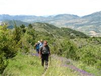 guided walking in french provence
