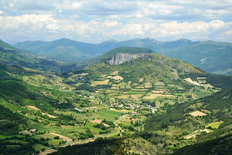 independent walking holiday baronnies lavender fields in provence France