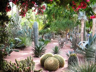 Majorelle Gardens Marrakech Morocco high atlas guided trekking tours and holidays