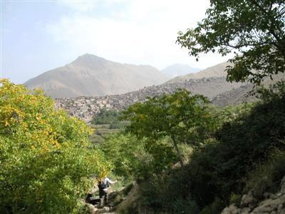 walnut apple trees Jbel toubkal mountain trek high atlas morocco africa guided trekking and walking holidays and tours