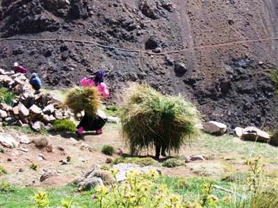 berber women in Toubkal on trek
