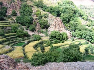 terraced fields on trek towards lac Ifni in High Atlas
