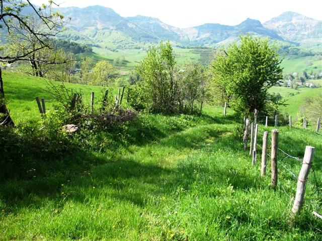 Jordanne Valley Cantal Auvergne France guided walking holiday
