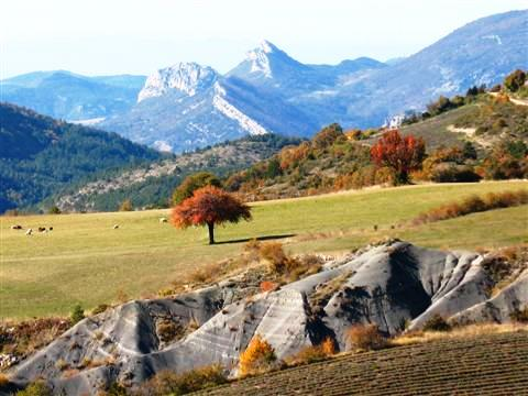views in baronnies provence walking trips