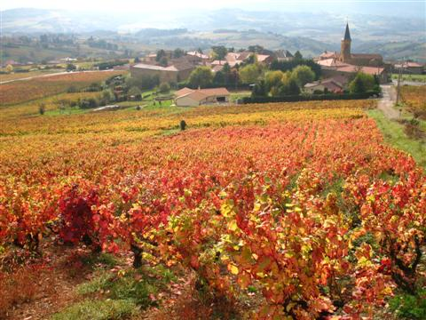 Village of Moiré in southern Beaujolais in French vines for this walking holiday with rental accommodation