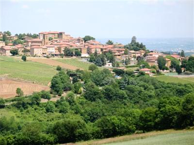 Theize beaujolais pierre dorees guided walking tours
