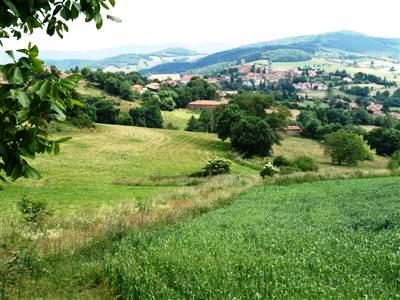 Mont Lyonnias Beaujolais guided walking holiday