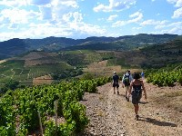 walking holiday in beaujolais