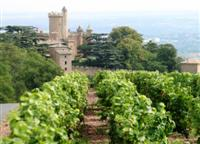 montmelas chateau and beaujolais vines in France walking holiday