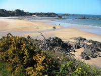 sandy beaches and cliffs brittany coastal path