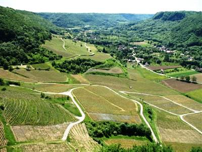 French Jura vineyards on guided walking holiday