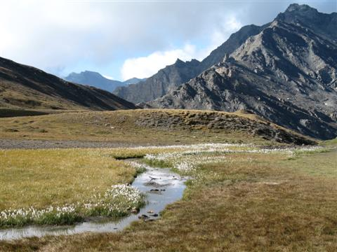 Alpine meadow and mountains in French Alps on guided trekking holiday