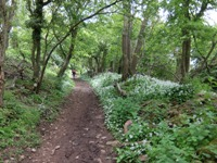 west mendip way